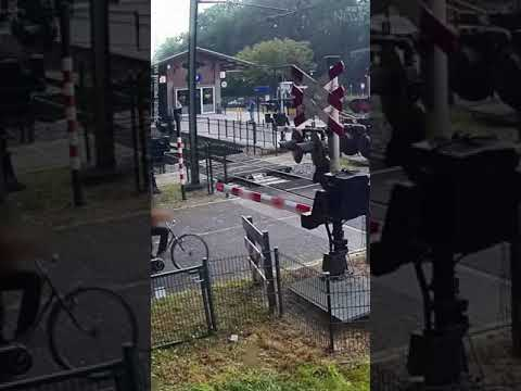 Woman ignores train barriers, nearly gets hit #shorts 1