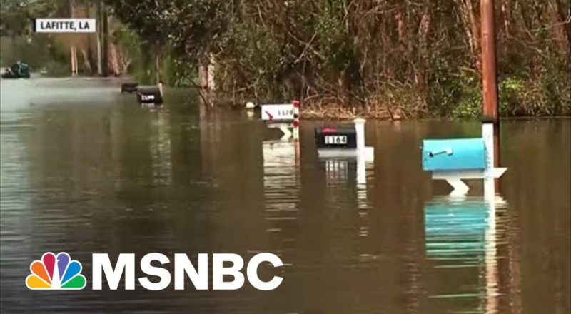 'Seek Shelter In Another State': Parts Of Louisiana Uninhabitable After Hurricane Ida 1