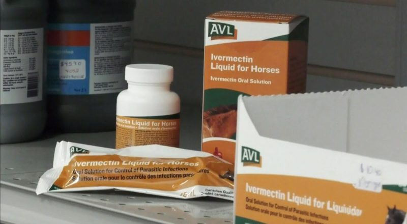 Demand grows in Alta. for livestock drug to treat COVID-19 1