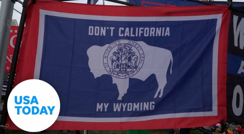 Cheney has to beat Trump's hold on the GOP to keep her seat in Wyoming   USA TODAY 4