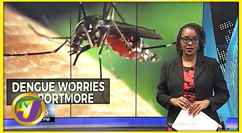 Dengue Fears in Portmore Jamaica   TVJ News - Sept 10 2021 1
