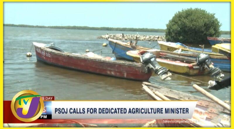 PSOJ Calls for Dedicated Agriculture Minister | TVJ Business Day - Sept 20 2021 1