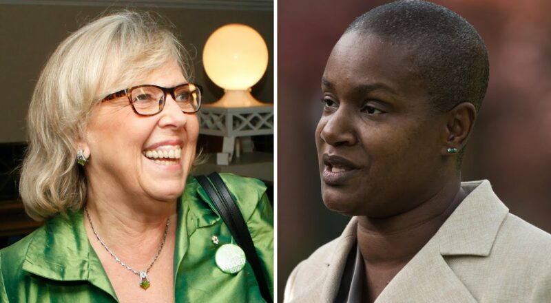 Annamie Paul is 'clearly' hurting the Green Party, says May 1