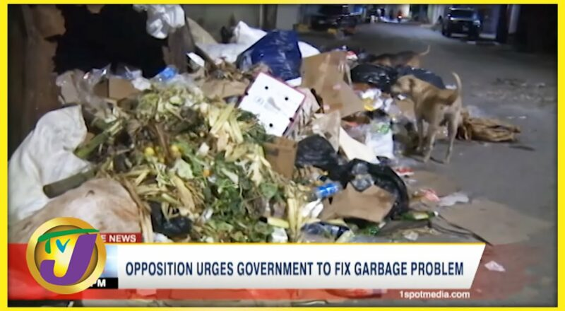 Opposition Urges Gov't to Fix Garbage Problem   TVJ News - Oct 2 2021 1