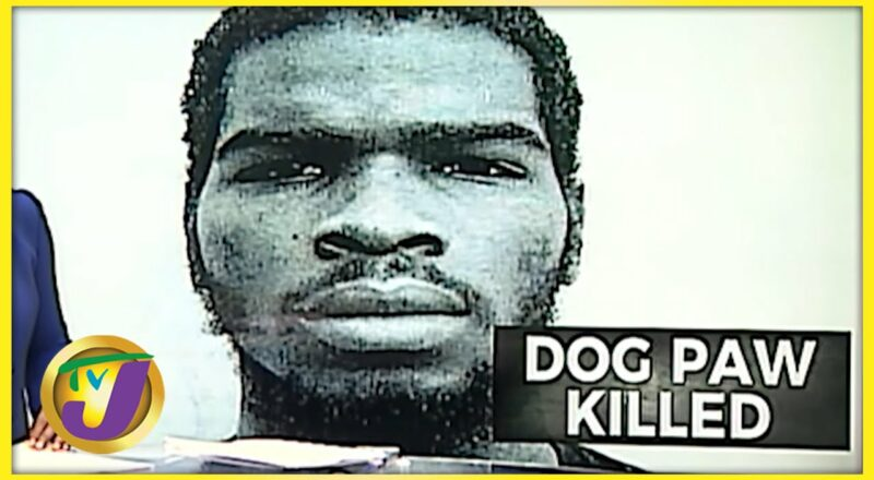 Alleged Gangster, Dog Paw, Killed by Police | TVJ News - Oct 11 2021 1