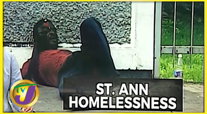 Increase in Homeless People in St. Ann   TVJ News - Oct 12 2021 1
