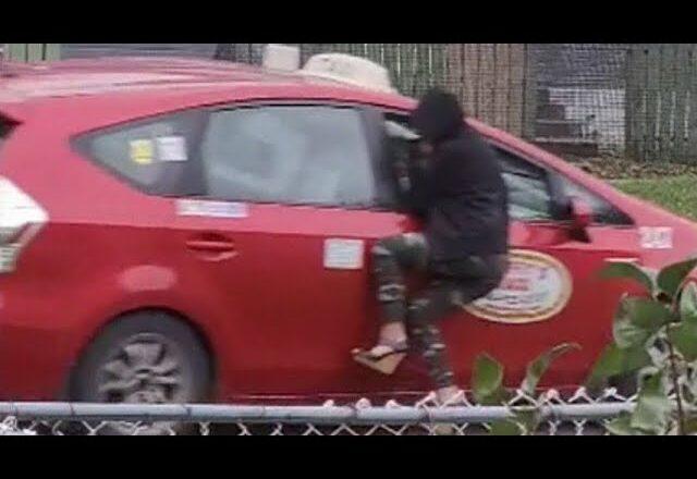 Winnipeg taxi driver facing dangerous driving charge 1